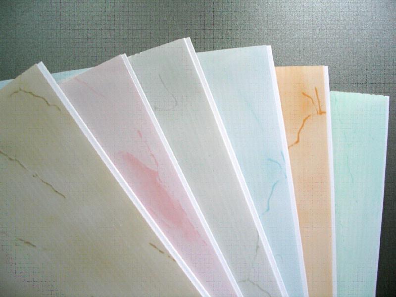 Выбор цвета пластиковых панелей для подвесного потолка довольно широк