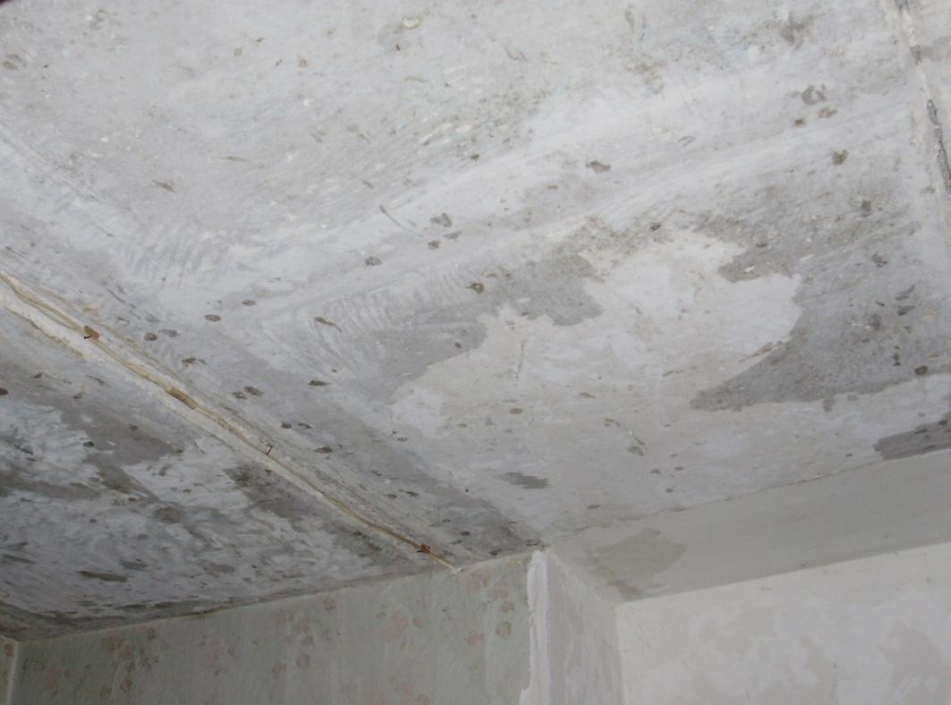 Потолок. требующий выравнивания
