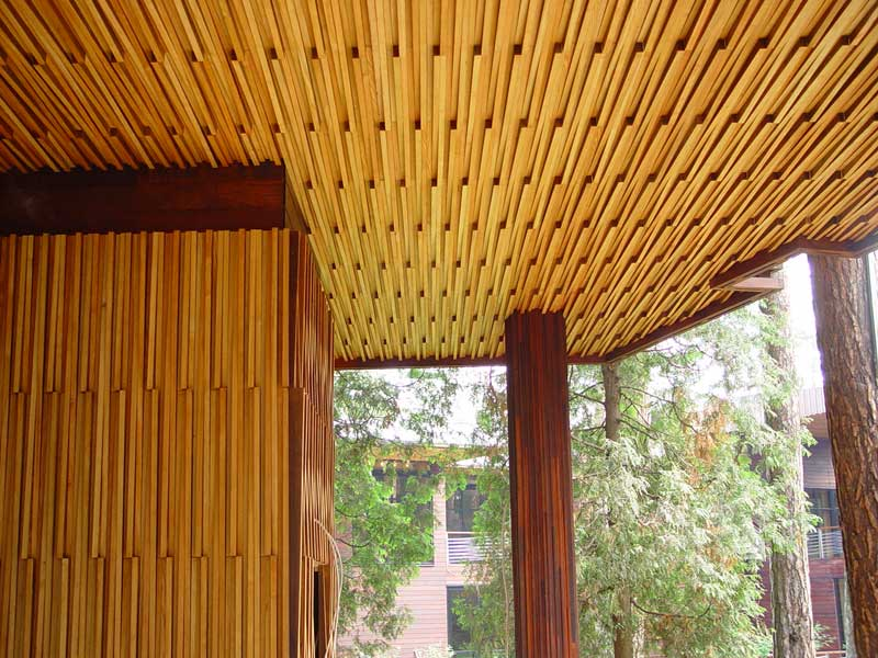 Интересная конструкция реечного потолка