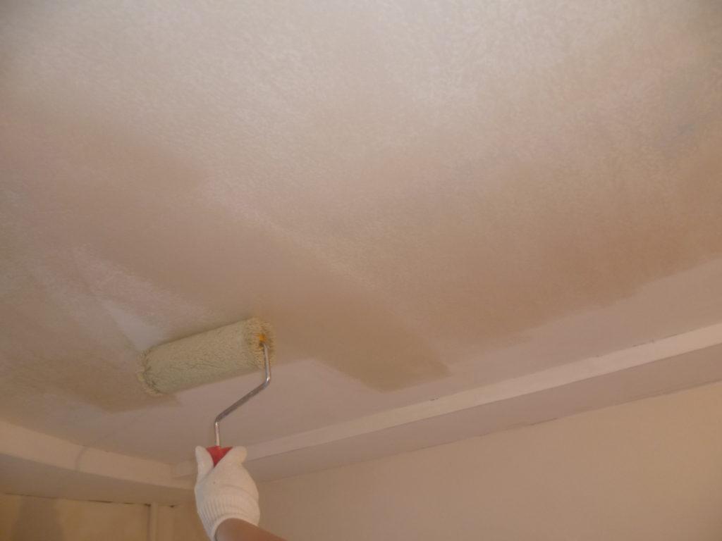 водоэмульсионная краска для потолка